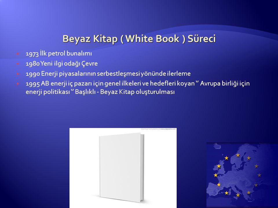 Beyaz Kitap ( White Book ) Süreci