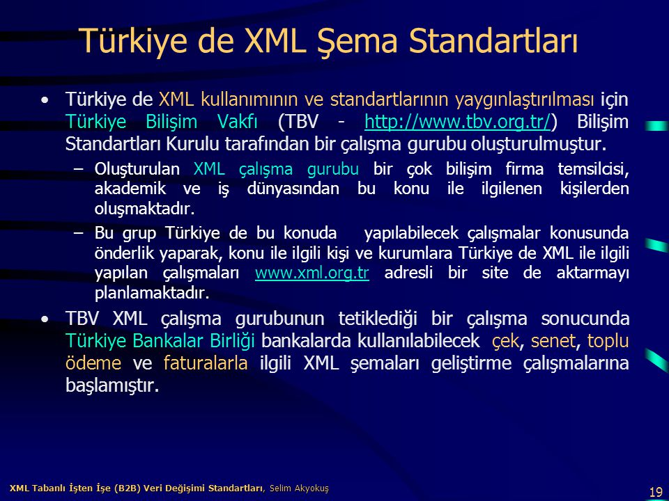 Türkiye de XML Şema Standartları