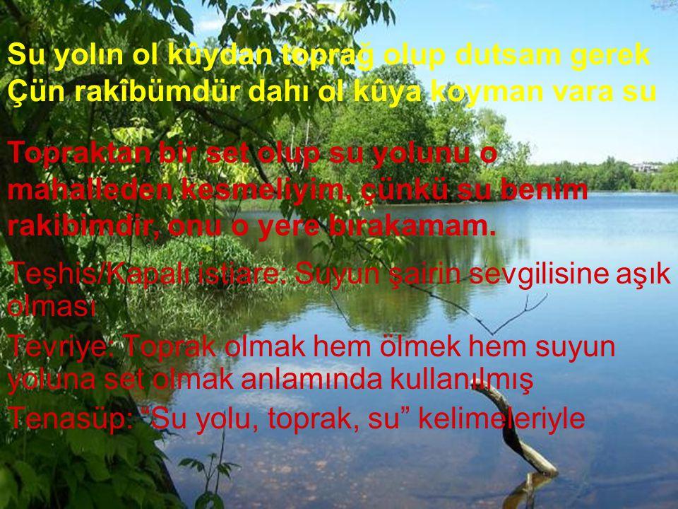 Su yolın ol kûydan toprağ olup dutsam gerek Çün rakîbümdür dahı ol kûya koyman vara su