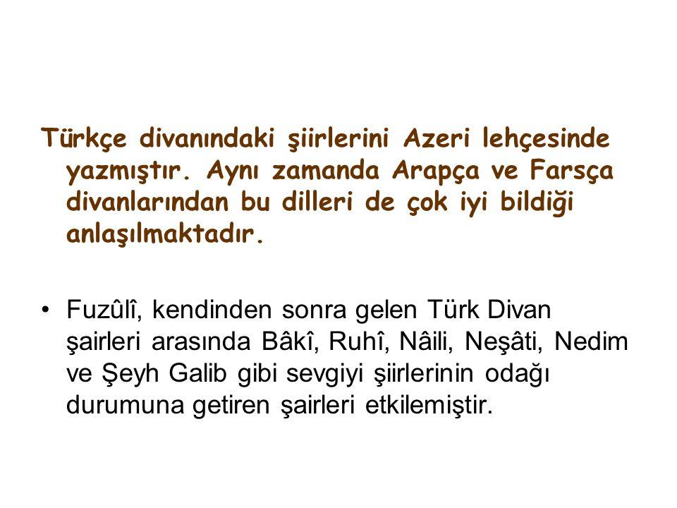 Türkçe divanındaki şiirlerini Azeri lehçesinde yazmıştır