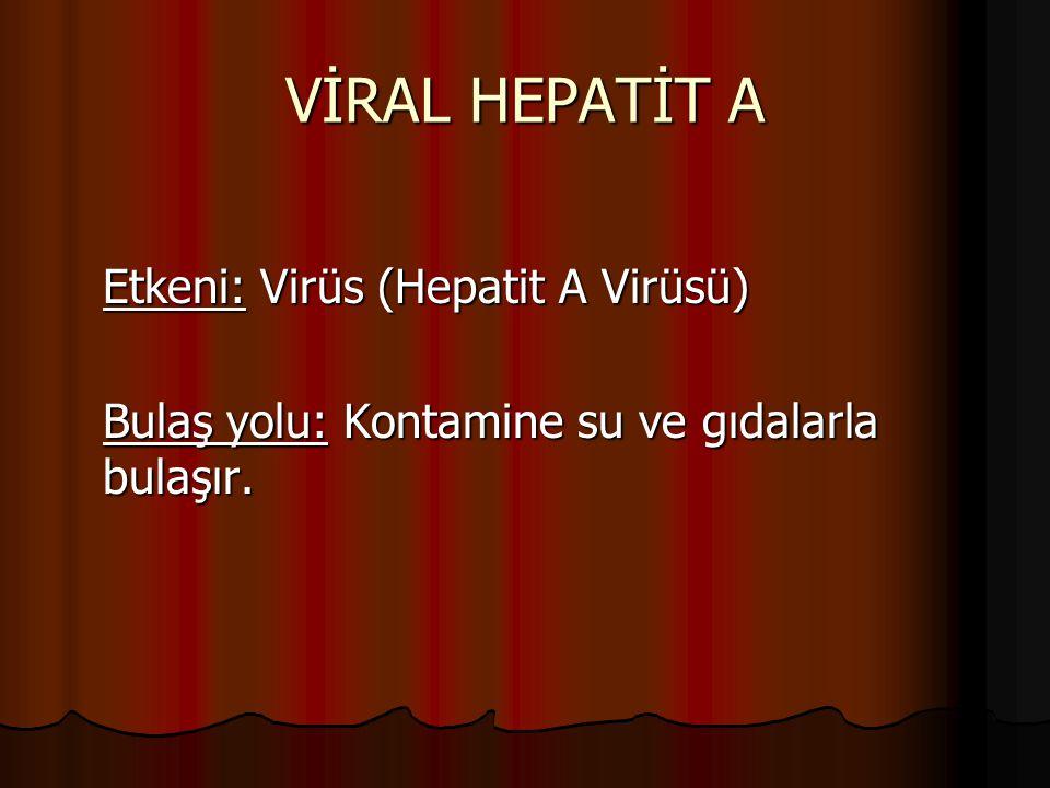 VİRAL HEPATİT A Etkeni: Virüs (Hepatit A Virüsü)