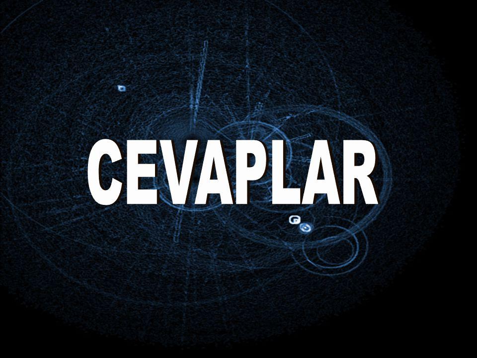CEVAPLAR