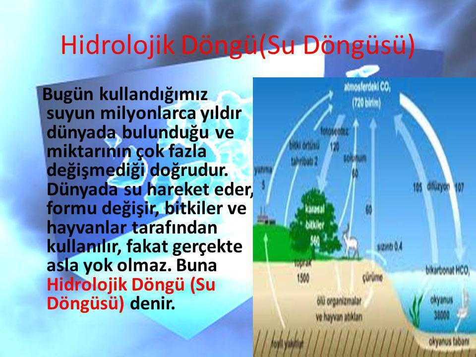 Hidrolojik Döngü(Su Döngüsü)