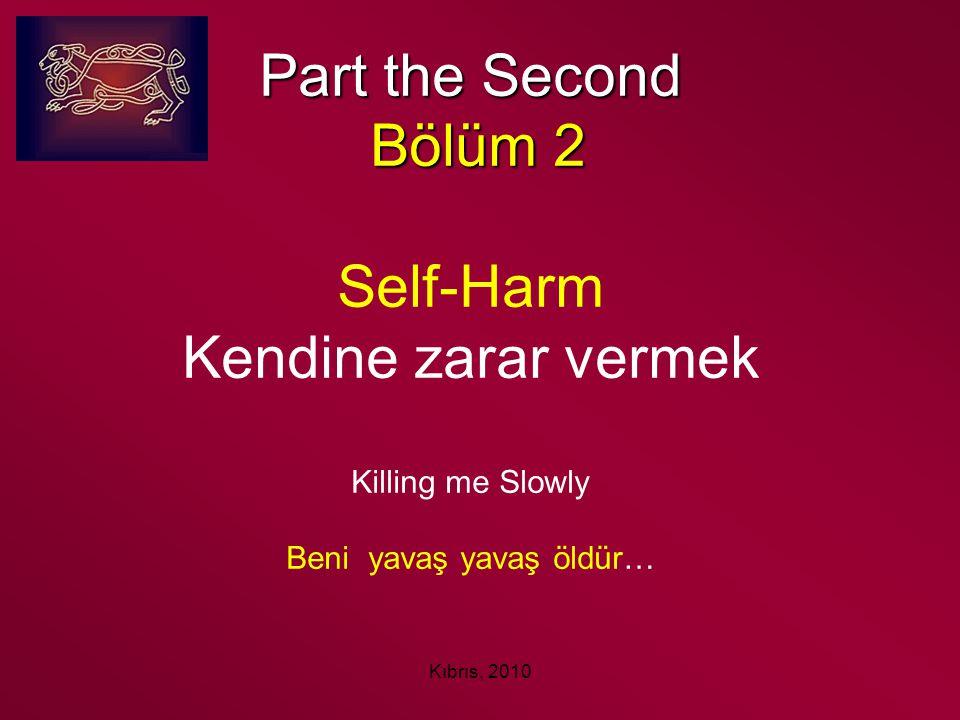 Part the Second Bölüm 2 Self-Harm Kendine zarar vermek Killing me Slowly Beni yavaş yavaş öldür…