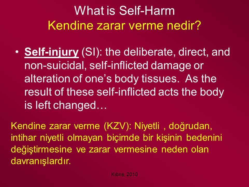 What is Self-Harm Kendine zarar verme nedir