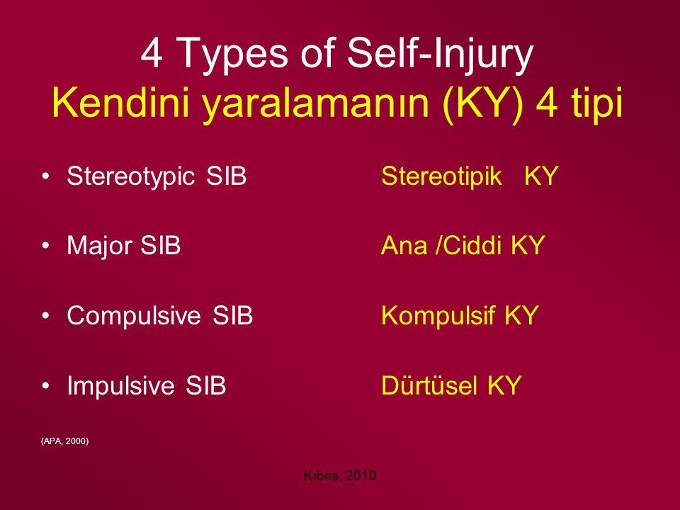 4 Types of Self-Injury Kendini yaralamanın (KY) 4 tipi