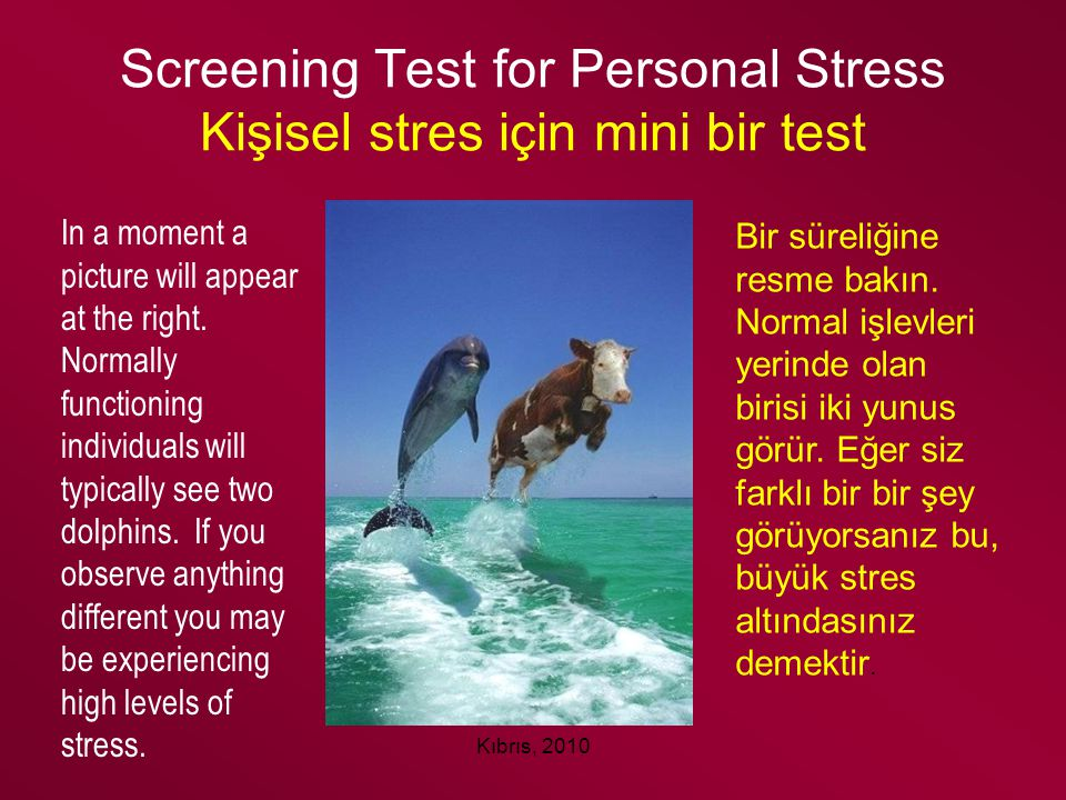 Screening Test for Personal Stress Kişisel stres için mini bir test