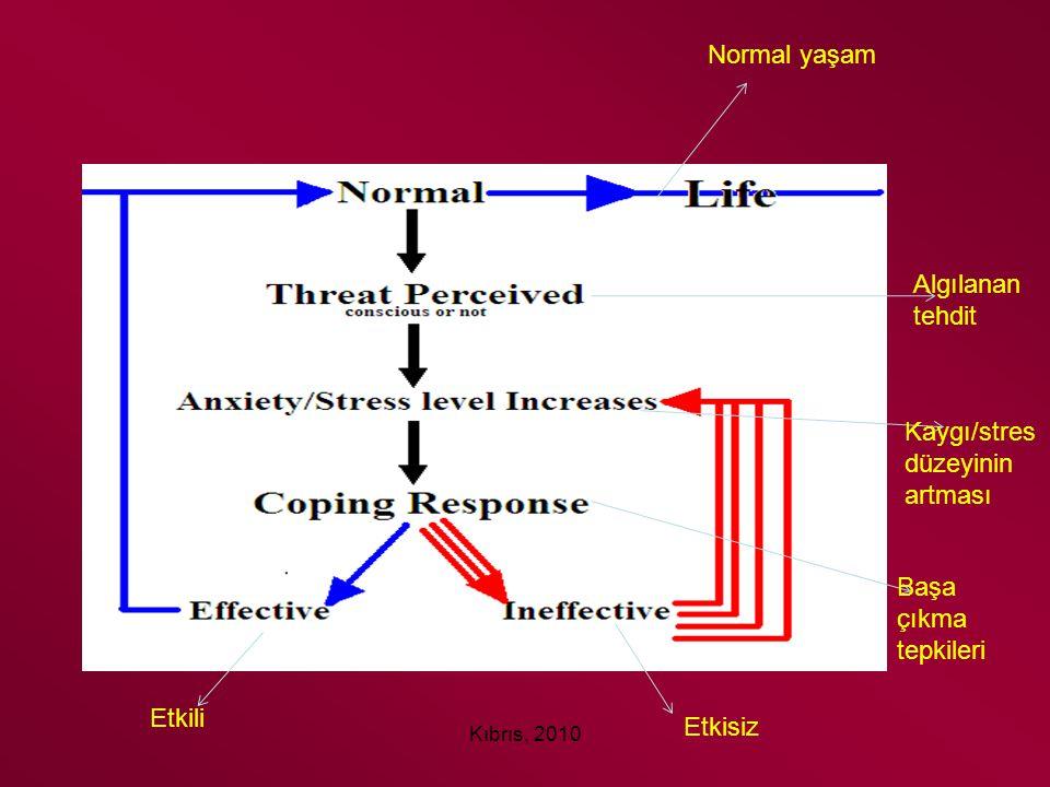 Kaygı/stres düzeyinin artması