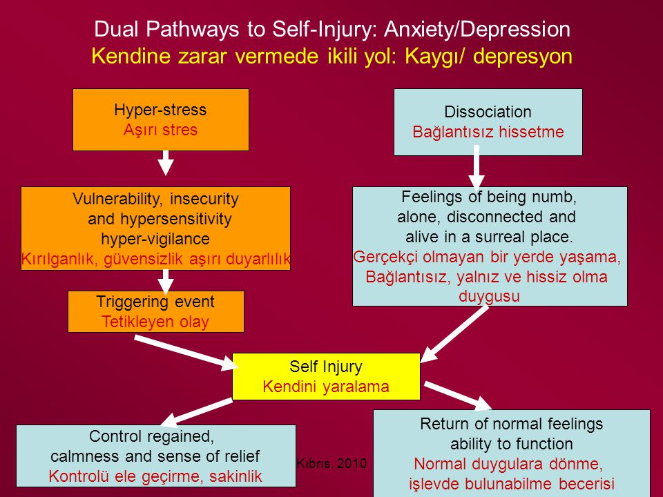 Dual Pathways to Self-Injury: Anxiety/Depression Kendine zarar vermede ikili yol: Kaygı/ depresyon