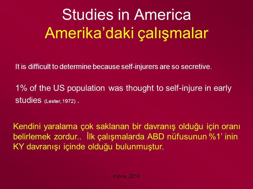 Studies in America Amerika'daki çalışmalar