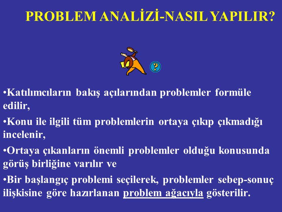 PROBLEM ANALİZİ-NASIL YAPILIR