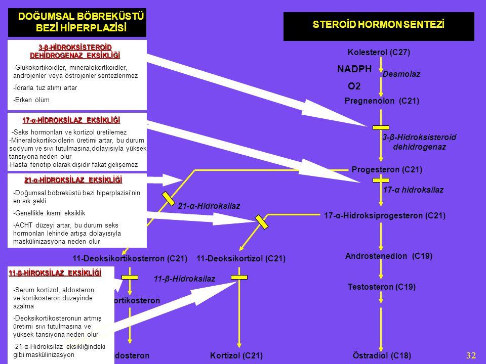 DOĞUMSAL BÖBREKÜSTÜ BEZİ HİPERPLAZİSİ STEROİD HORMON SENTEZİ NADPH O2
