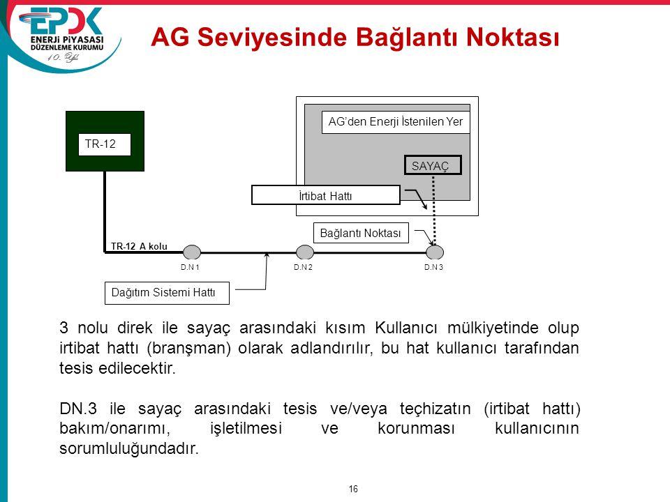 AG Seviyesinde Bağlantı Noktası
