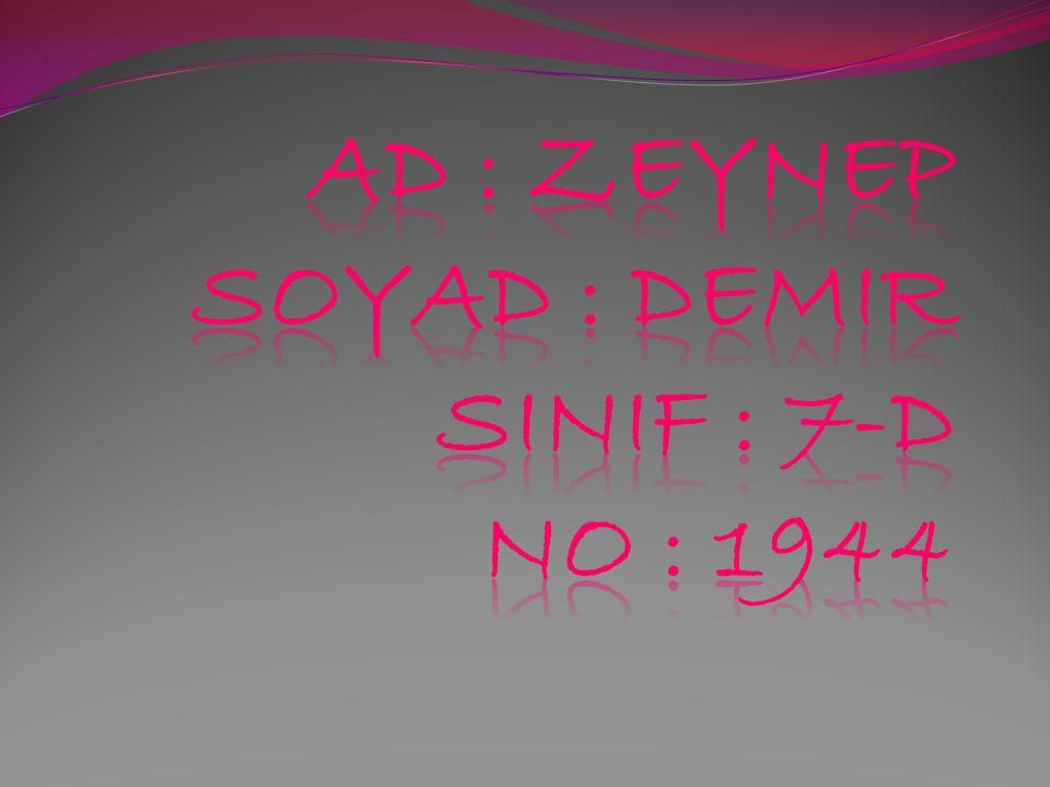 Ad : zeynep soyad : demIr sinif : 7-d no : 1944