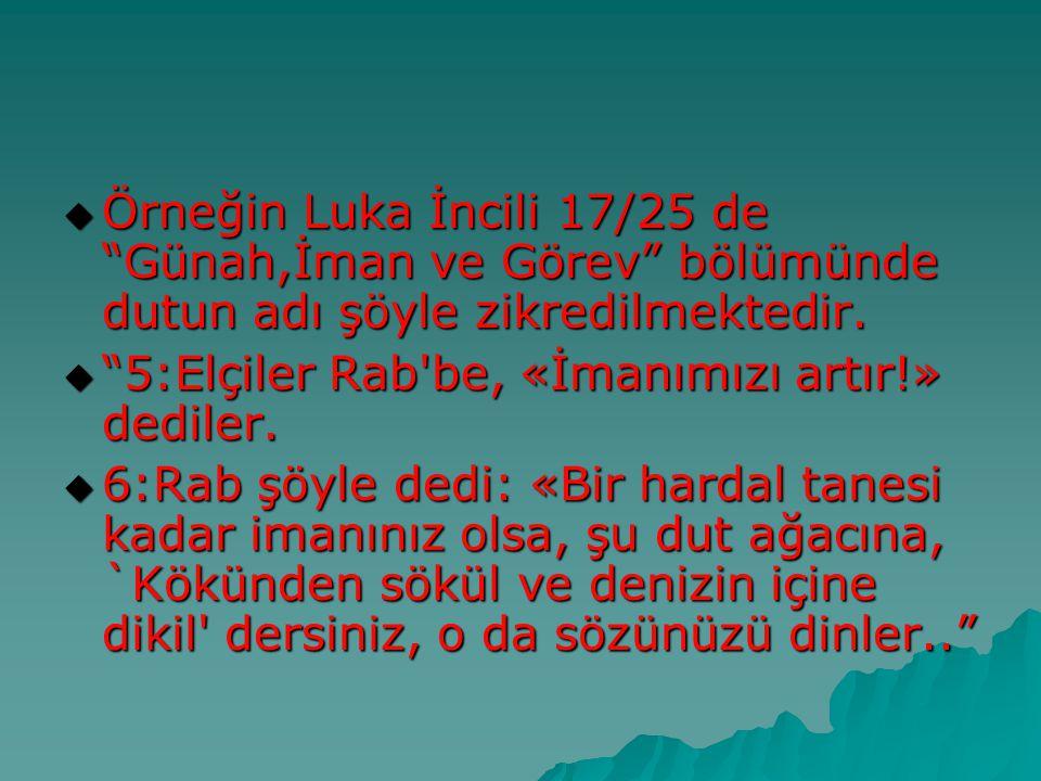 Örneğin Luka İncili 17/25 de Günah,İman ve Görev bölümünde dutun adı şöyle zikredilmektedir.