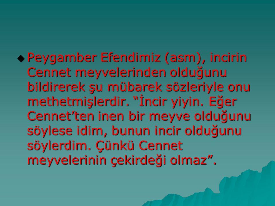Peygamber Efendimiz (asm), incirin Cennet meyvelerinden olduğunu bildirerek şu mübarek sözleriyle onu methetmişlerdir.