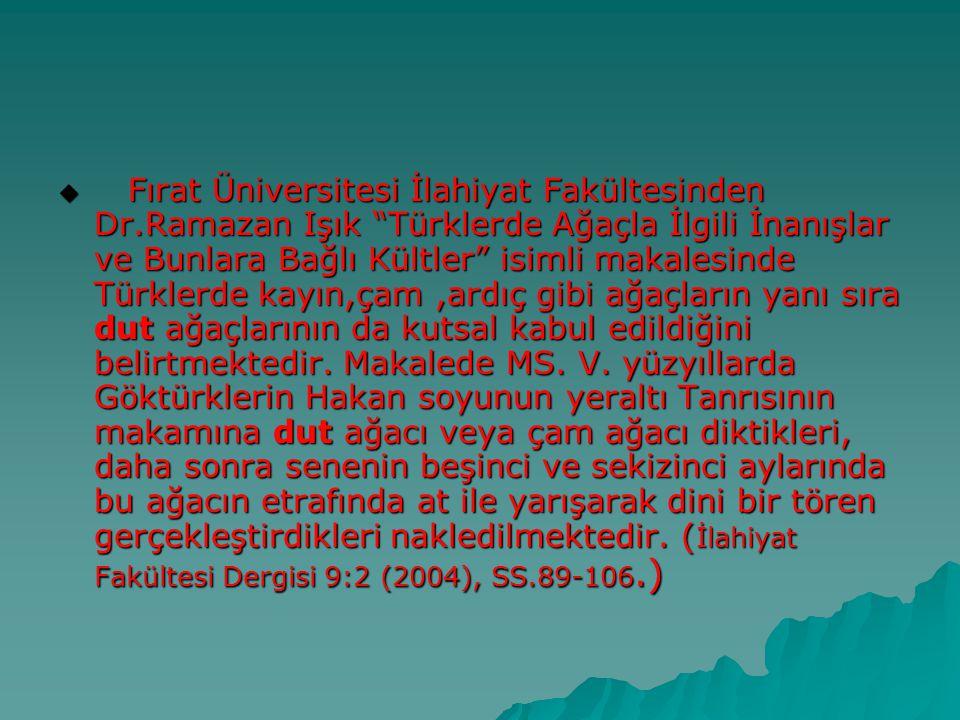Fırat Üniversitesi İlahiyat Fakültesinden Dr