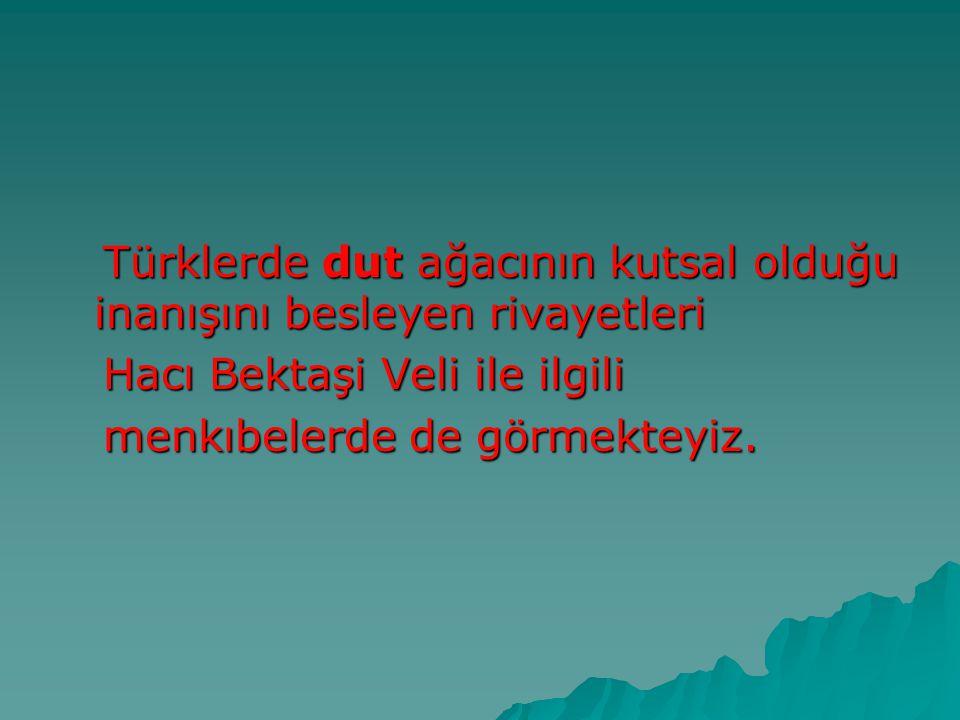 Türklerde dut ağacının kutsal olduğu inanışını besleyen rivayetleri