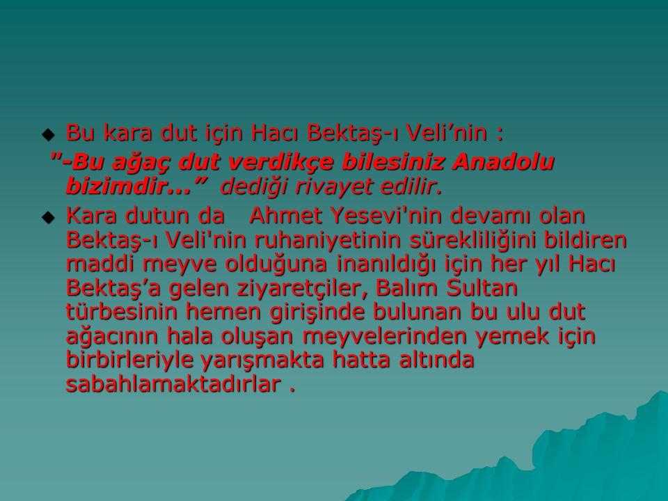 Bu kara dut için Hacı Bektaş-ı Veli'nin :