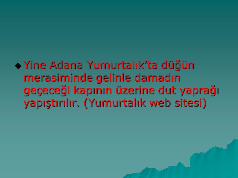 Yine Adana Yumurtalık'ta düğün merasiminde gelinle damadın geçeceği kapının üzerine dut yaprağı yapıştırılır.