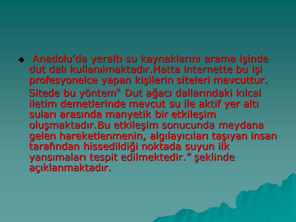 Anadolu'da yeraltı su kaynaklarını arama işinde dut dalı kullanılmaktadır.Hatta internette bu işi profesyonelce yapan kişilerin siteleri mevcuttur.