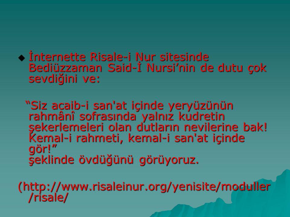 İnternette Risale-i Nur sitesinde Bediüzzaman Said-İ Nursi'nin de dutu çok sevdiğini ve: