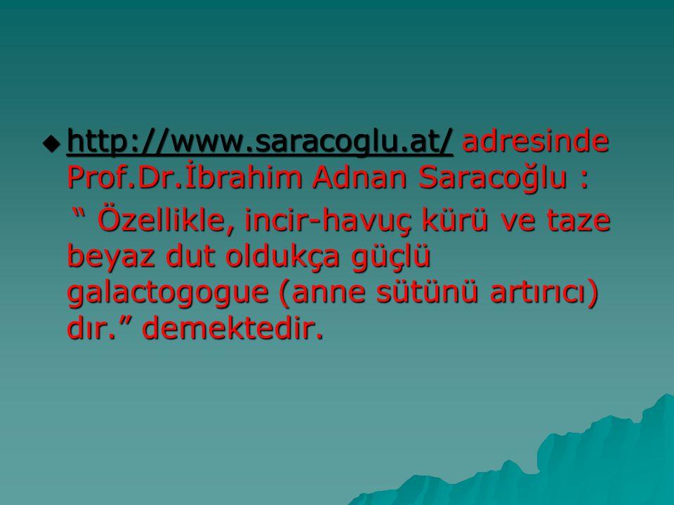 http://www.saracoglu.at/ adresinde Prof.Dr.İbrahim Adnan Saracoğlu :
