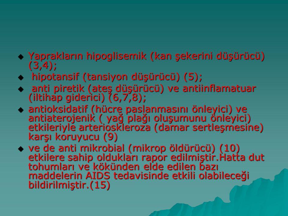 Yaprakların hipoglisemik (kan şekerini düşürücü) (3,4);