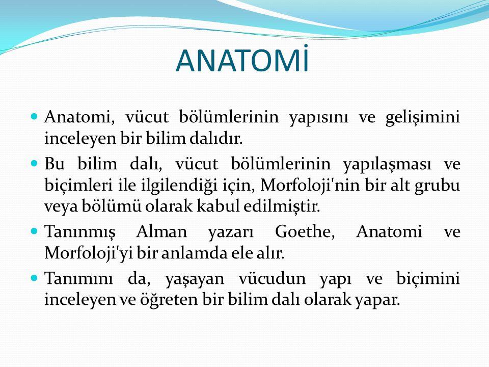 ANATOMİ Anatomi, vücut bölümlerinin yapısını ve gelişimini inceleyen bir bilim dalıdır.