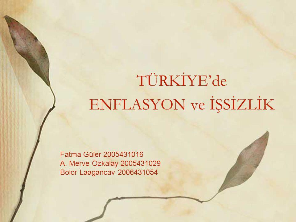 TÜRKİYE'de ENFLASYON ve İŞSİZLİK
