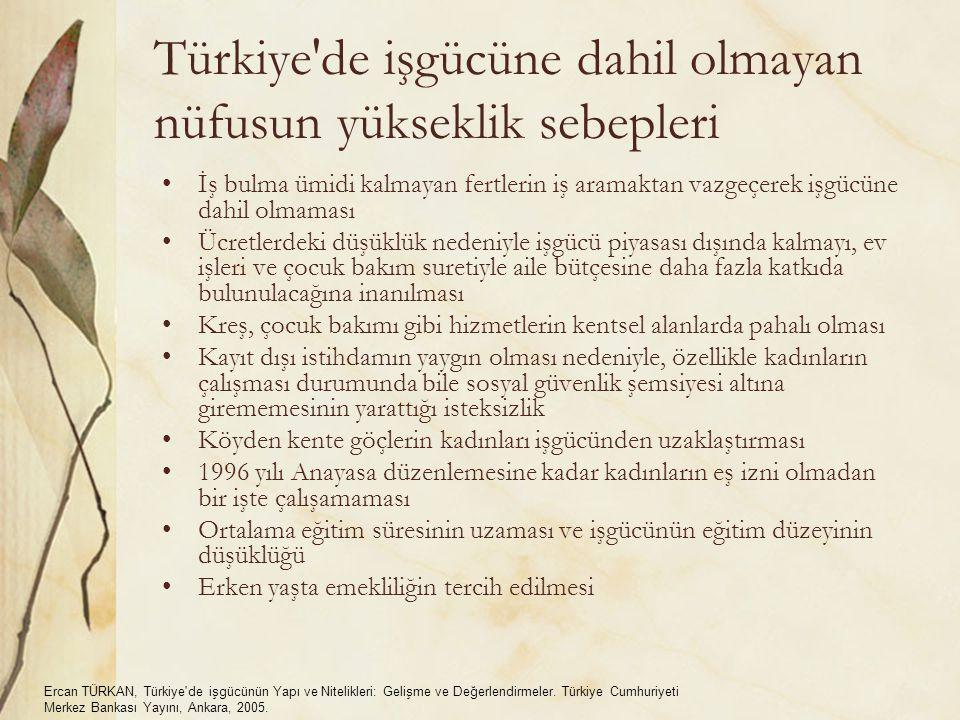 Türkiye de işgücüne dahil olmayan nüfusun yükseklik sebepleri