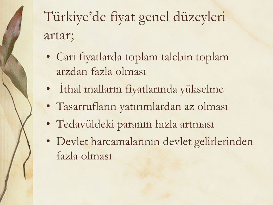Türkiye'de fiyat genel düzeyleri artar;