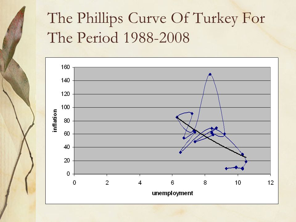 The Phillips Curve Of Turkey For The Period 1988-2008