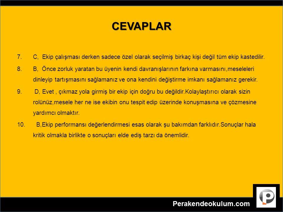 CEVAPLAR C, Ekip çalışması derken sadece özel olarak seçilmiş birkaç kişi değil tüm ekip kastedilir.