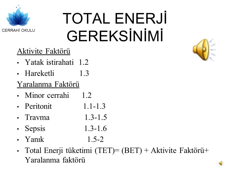 TOTAL ENERJİ GEREKSİNİMİ