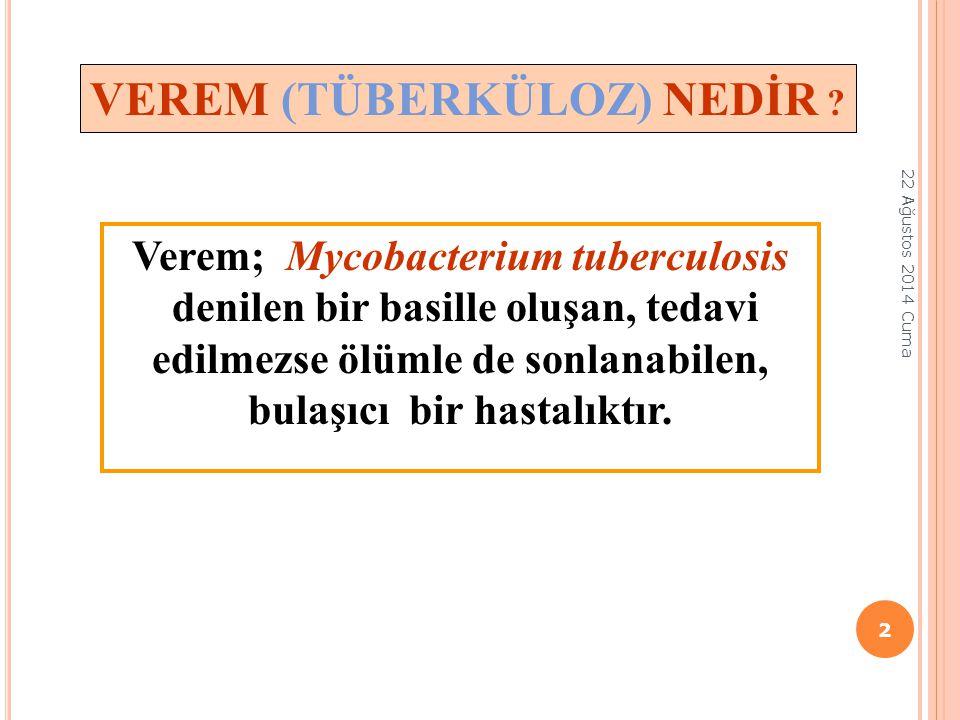 Verem; Mycobacterium tuberculosis
