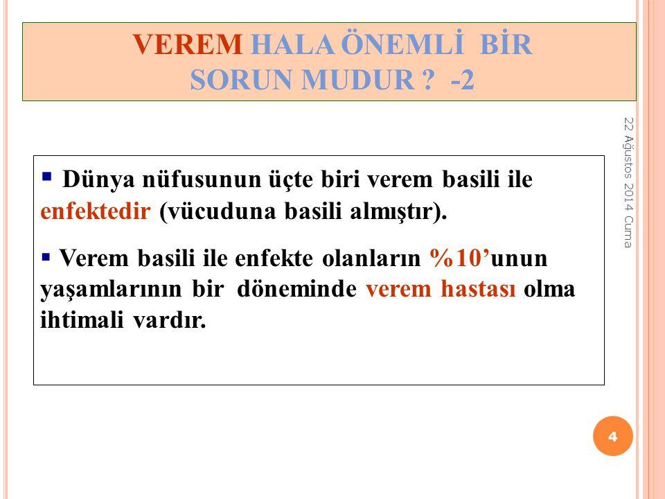 VEREM HALA ÖNEMLİ BİR SORUN MUDUR -2