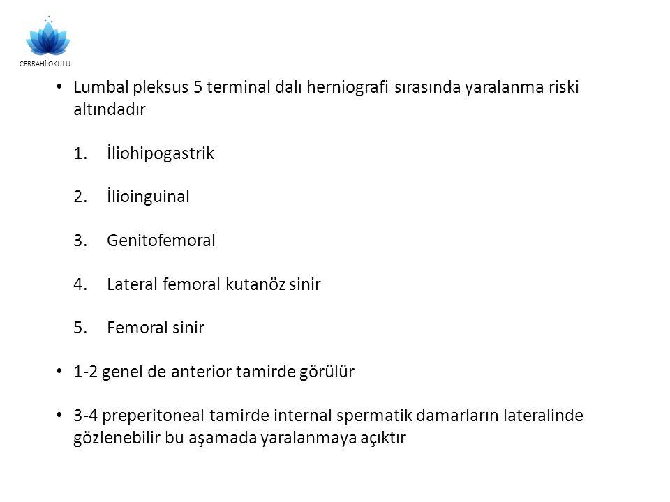 Lumbal pleksus 5 terminal dalı herniografi sırasında yaralanma riski altındadır