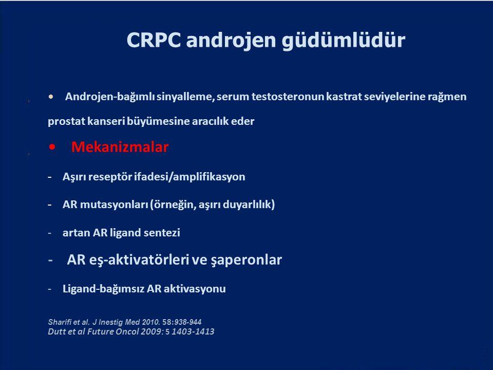 CRPC androjen güdümlüdür