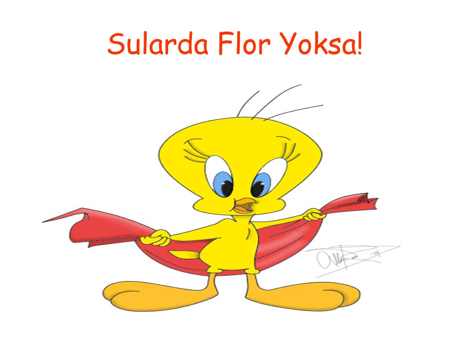 Sularda Flor Yoksa!