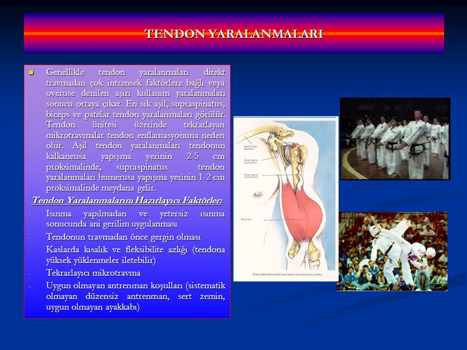 TENDON YARALANMALARI