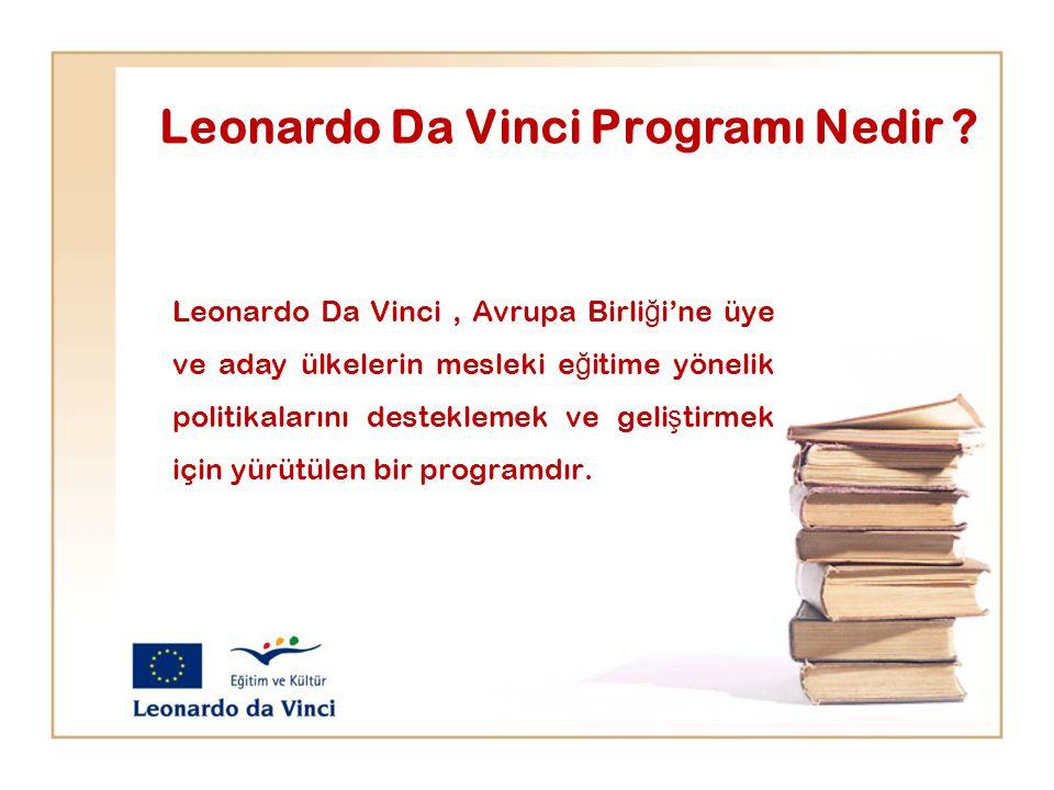 Leonardo Da Vinci Programı Nedir