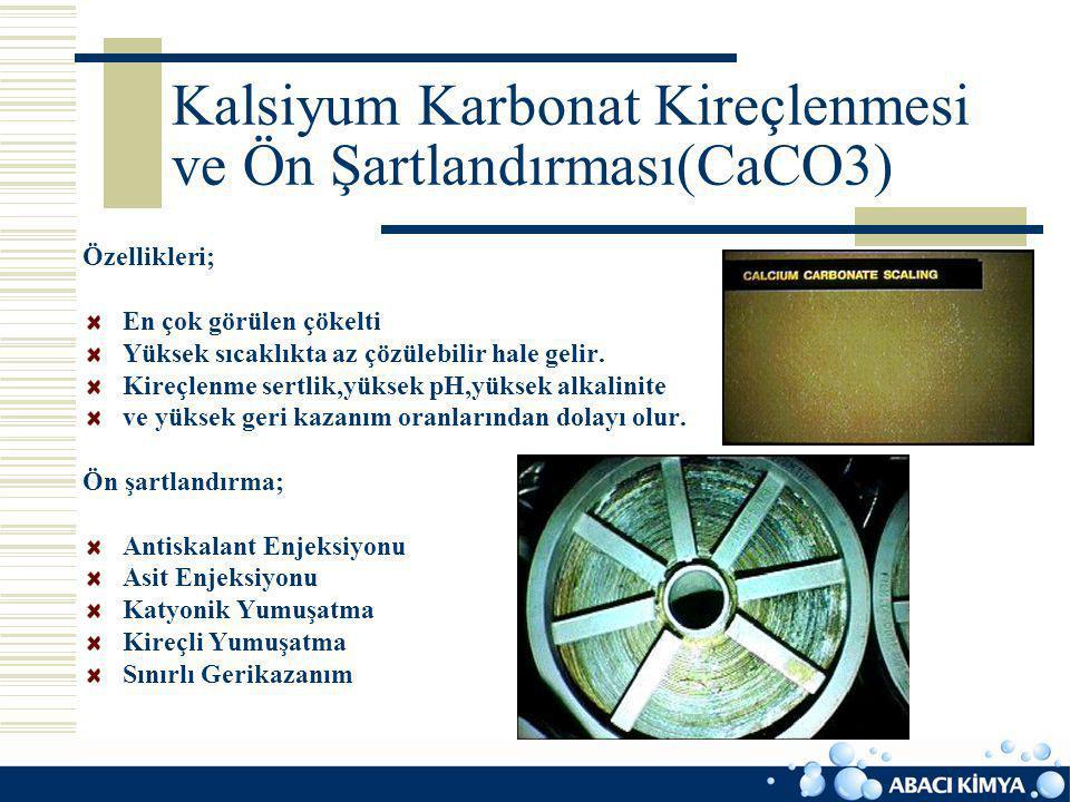 Kalsiyum Karbonat Kireçlenmesi ve Ön Şartlandırması(CaCO3)
