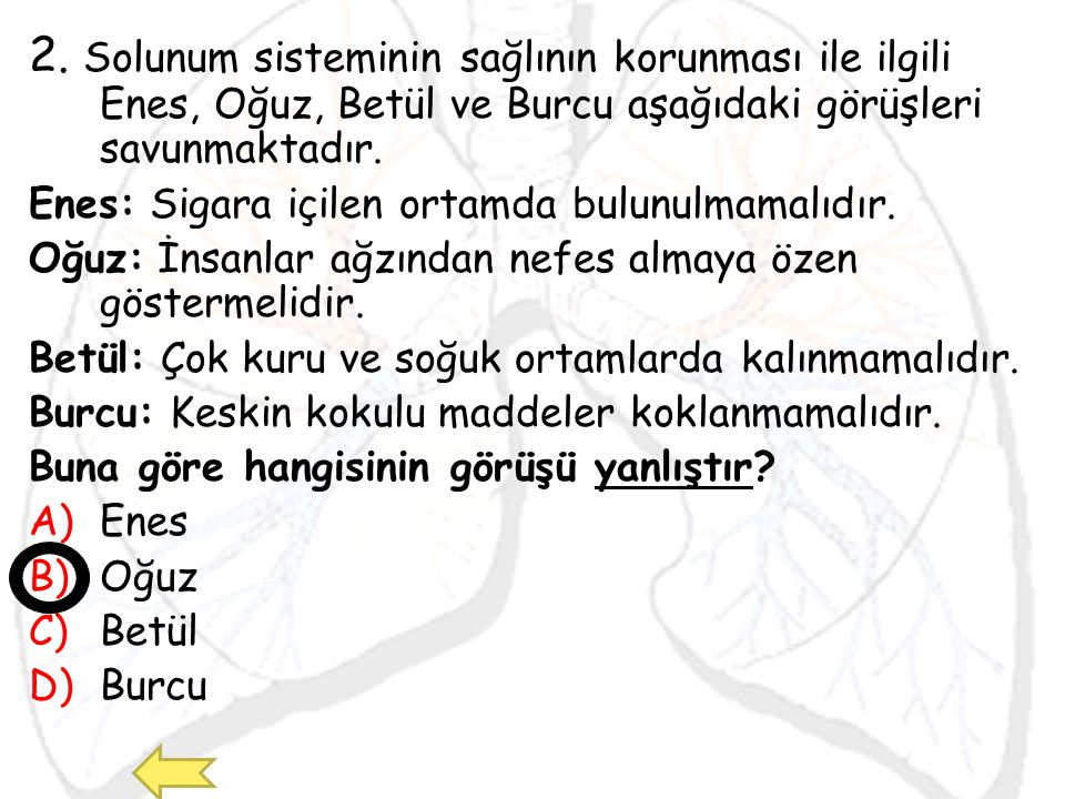 2. Solunum sisteminin sağlının korunması ile ilgili Enes, Oğuz, Betül ve Burcu aşağıdaki görüşleri savunmaktadır.