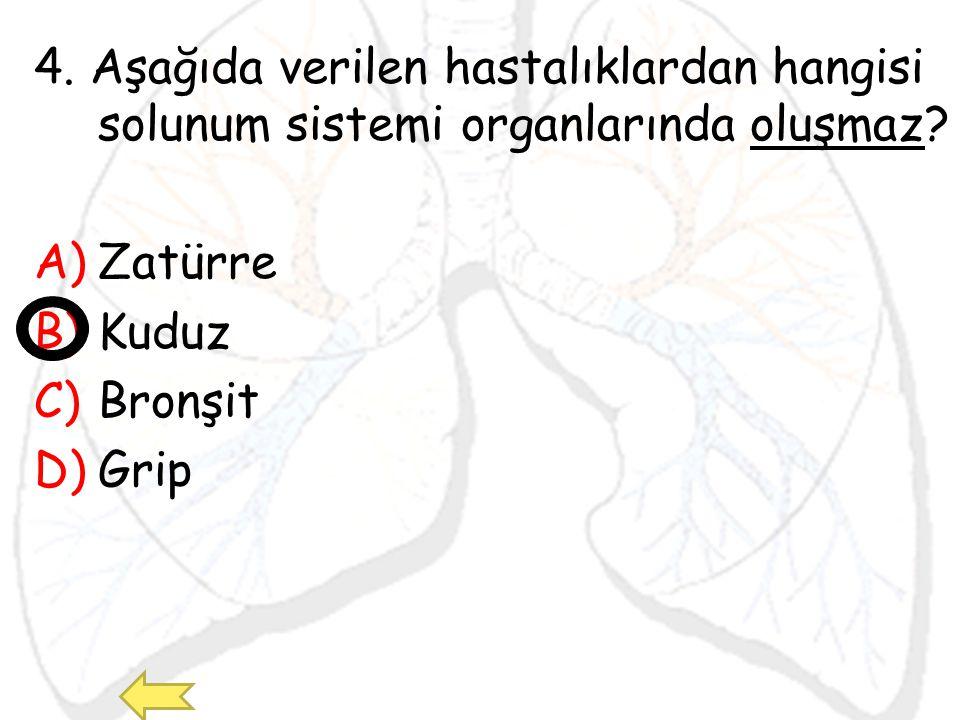 4. Aşağıda verilen hastalıklardan hangisi solunum sistemi organlarında oluşmaz