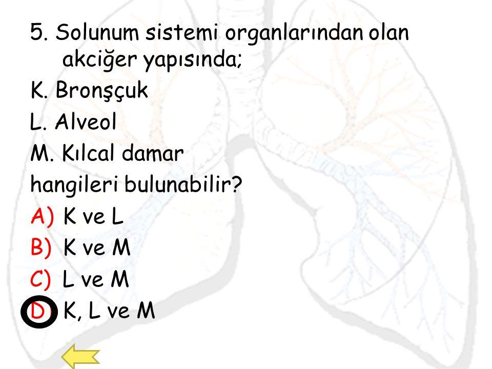 5. Solunum sistemi organlarından olan akciğer yapısında;