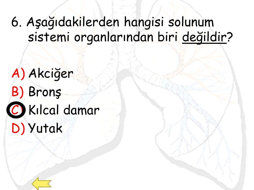 6. Aşağıdakilerden hangisi solunum sistemi organlarından biri değildir