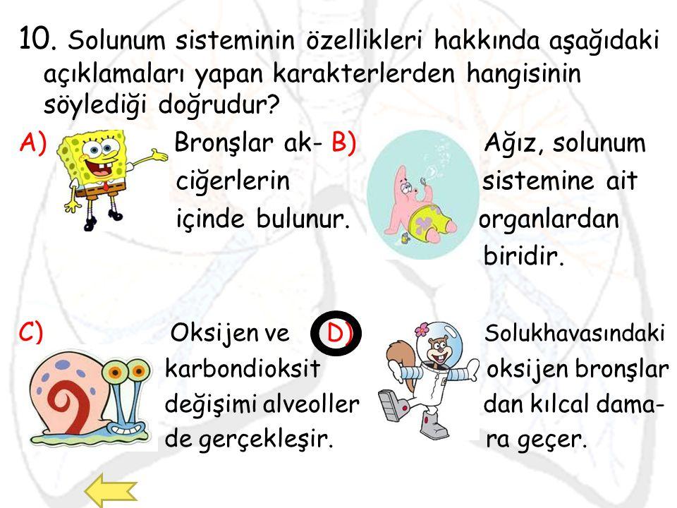 10. Solunum sisteminin özellikleri hakkında aşağıdaki açıklamaları yapan karakterlerden hangisinin söylediği doğrudur
