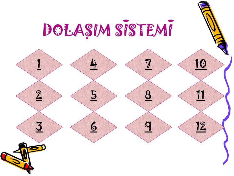 DOLASIM SISTEMI 1 4 7 10 2 5 8 11 3 6 9 12