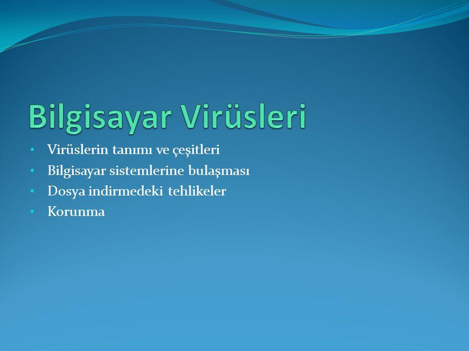 Bilgisayar Virüsleri Virüslerin tanımı ve çeşitleri